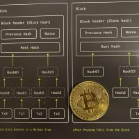 Bitcoin: 10 millió ok az ünneplésre!